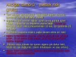 akci er t m r y ksek risk grubu1