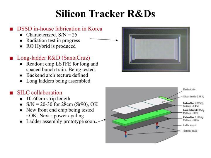 Silicon Tracker R&Ds