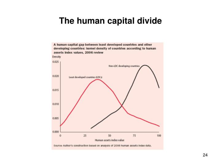 The human capital divide