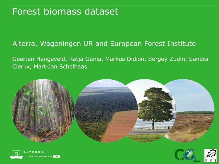 forest biomass dataset n.