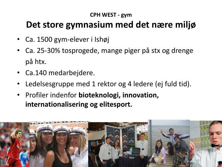 CPH WEST - gym