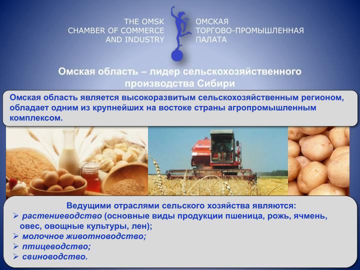Омская область – лидер сельскохозяйственного