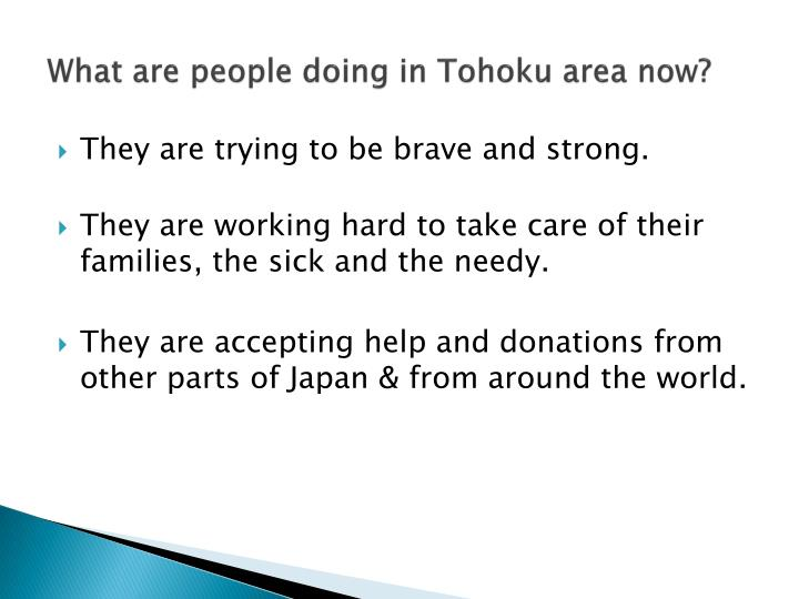 What are people doing in Tohoku area now?