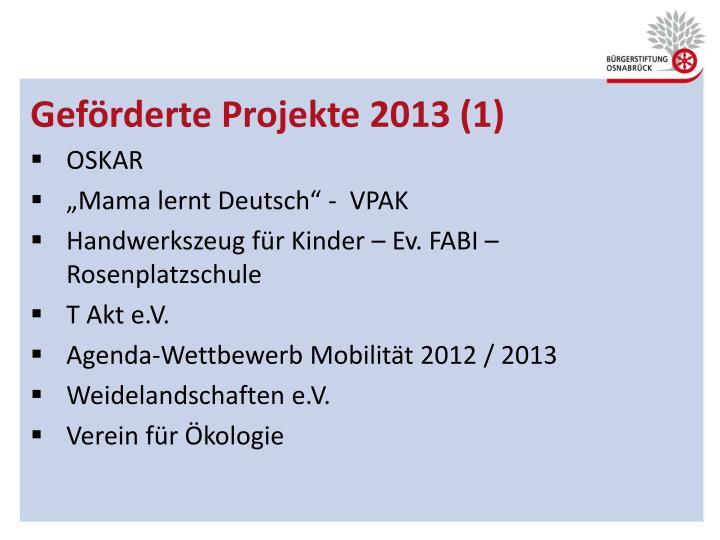 Geförderte Projekte 2013 (1)