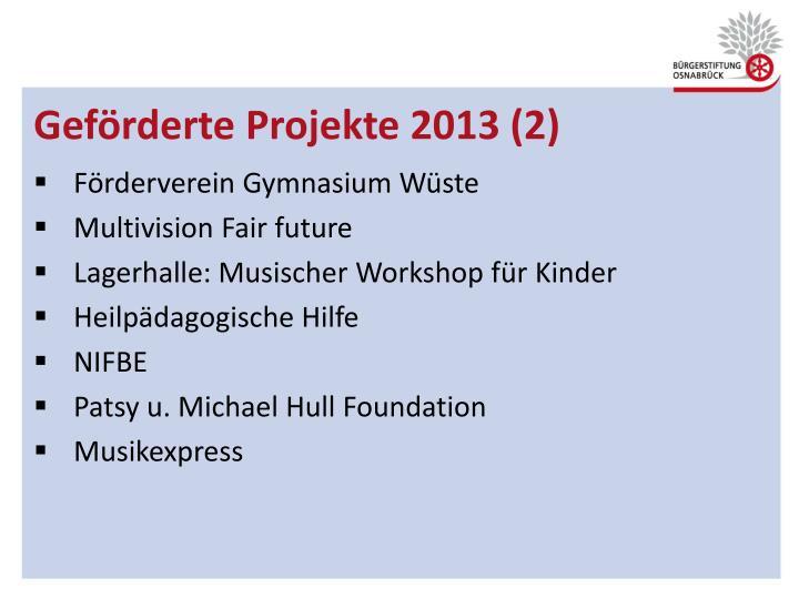 Geförderte Projekte 2013 (2)
