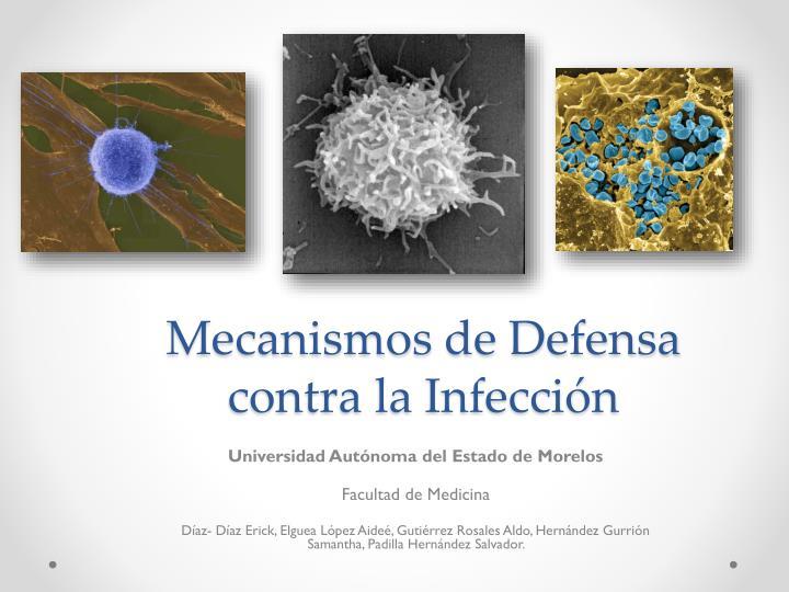 mecanismos de defensa contra la infecci n n.