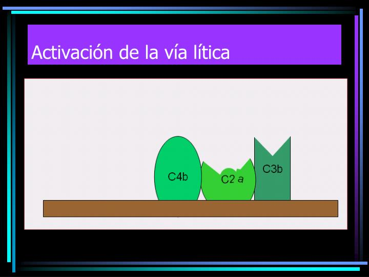 Activación de la vía lítica