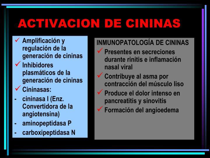 Amplificación y regulación de la generación de cininas