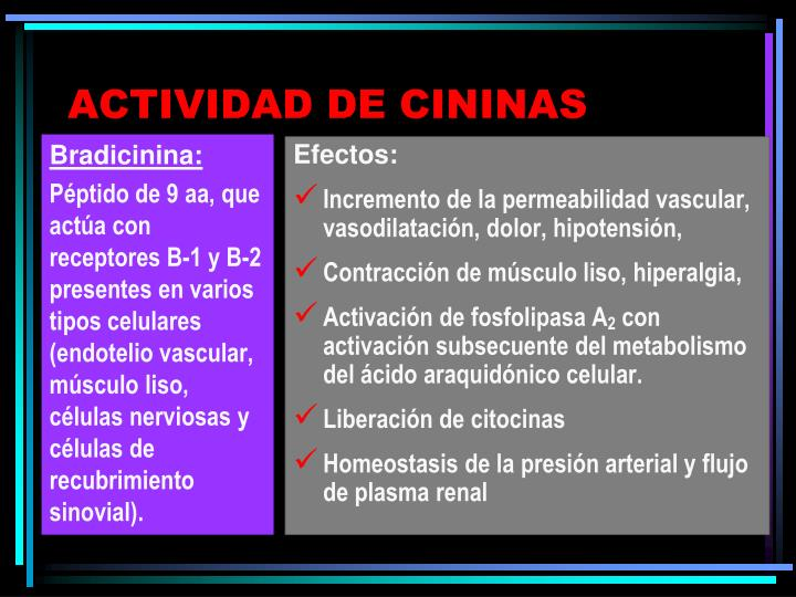 Bradicinina: