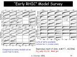 early rhic model survey