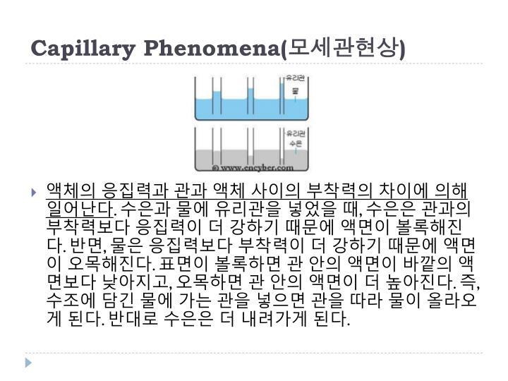 Capillary Phenomena(