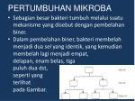 pertumbuhan mikroba