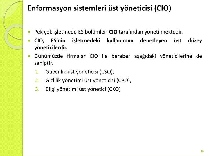 Enformasyon sistemleri üst yöneticisi (CIO)