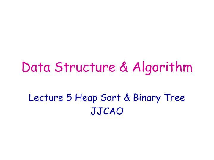 data structure algorithm n.
