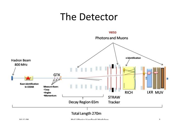 The detector