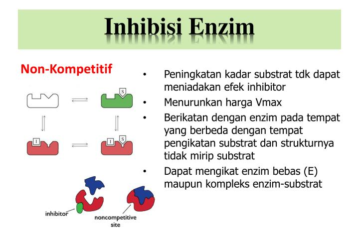 Inhibisi Enzim