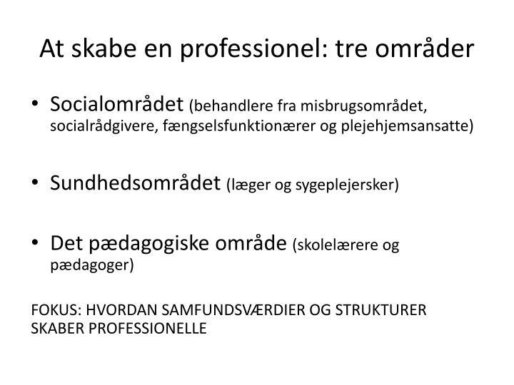 At skabe en professionel: tre områder
