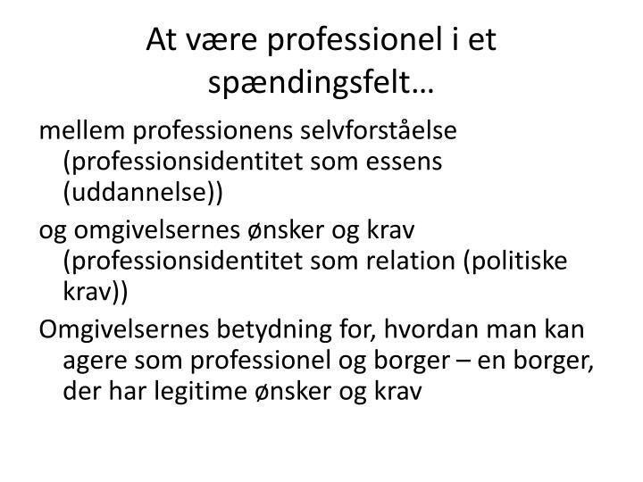 At være professionel i et spændingsfelt…