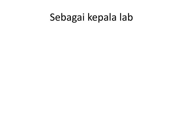 Sebagai kepala lab