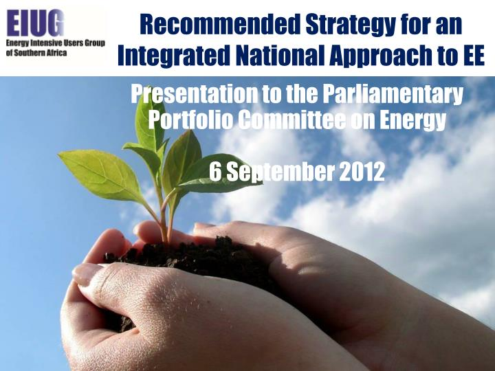 recommended strategy for an integrated national approach to ee n.