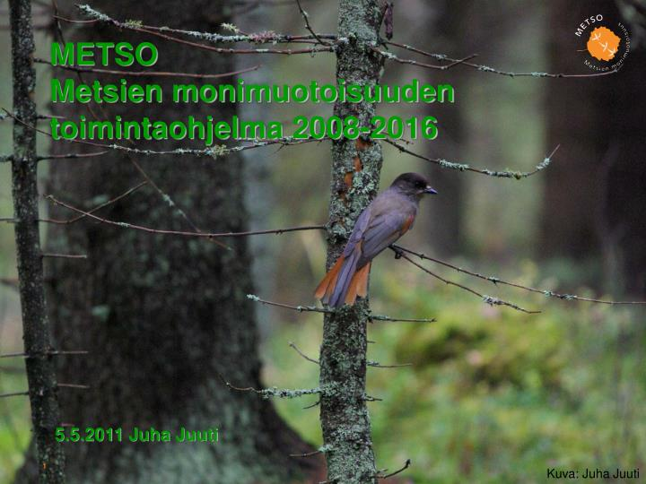 Metso metsien monimuotoisuuden toimintaohjelma 2008 2016