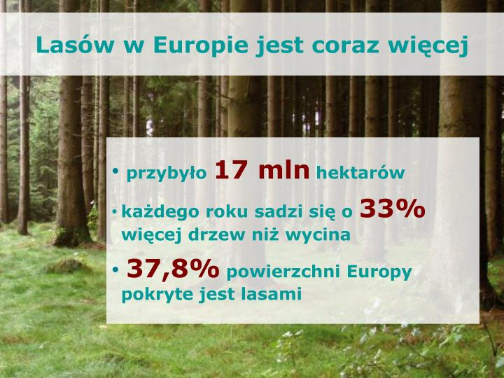 Lasów w Europie jest coraz więcej