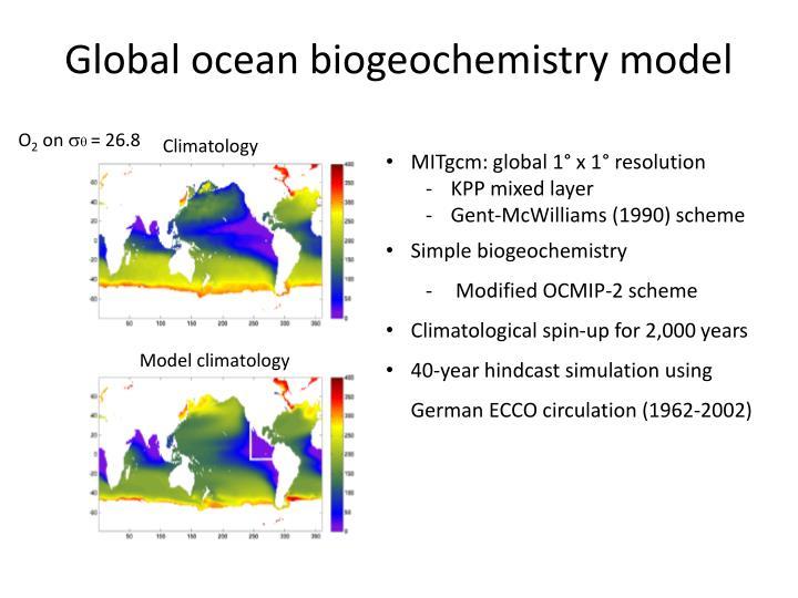 Global ocean biogeochemistry model
