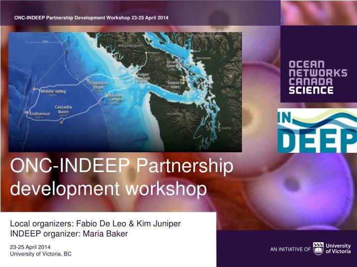 onc indeep partnership development workshop n.