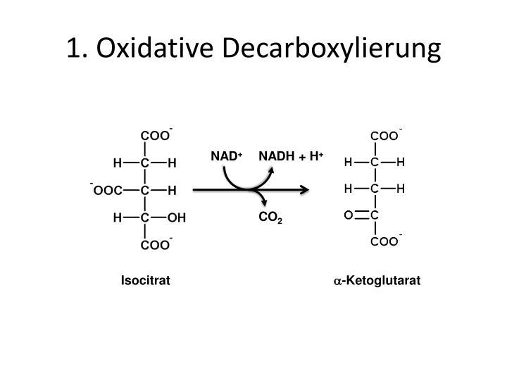 1 oxidative decarboxylierung