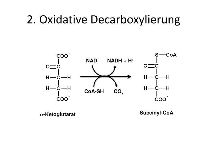 2 oxidative decarboxylierung