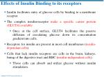 effects of insulin binding to its receptors