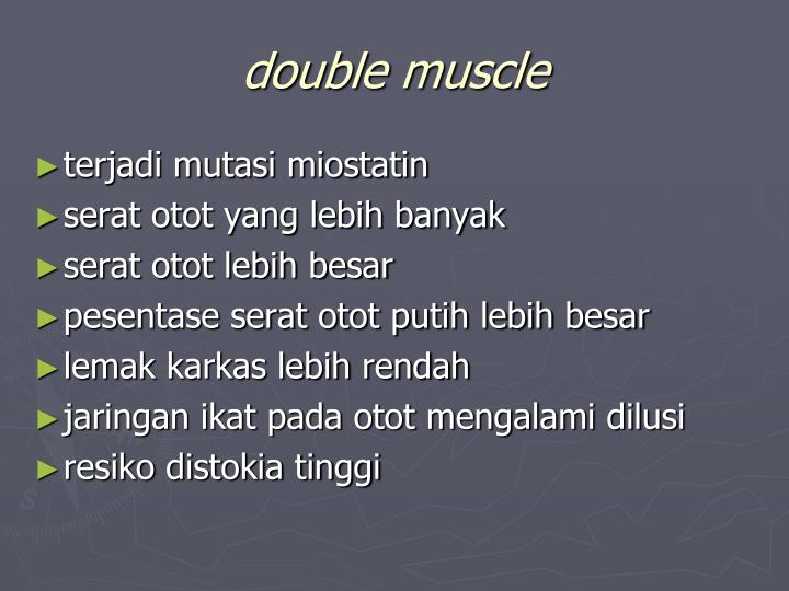 double muscle