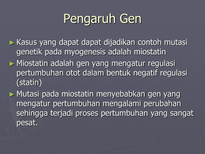 Pengaruh Gen