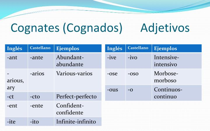 Cognates cognados adjetivos