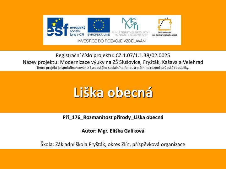 PPT - Liška obecná PowerPoint Presentation - ID 3451265 c1b0a2363a