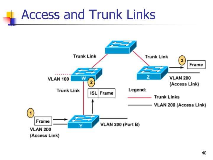 Access and Trunk Links