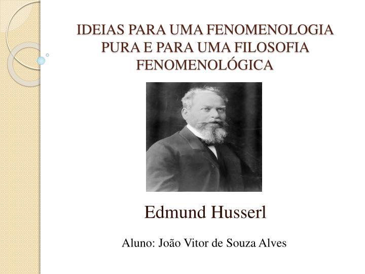 Ideias para uma fenomenologia pura e para uma filosofia fenomenol gica