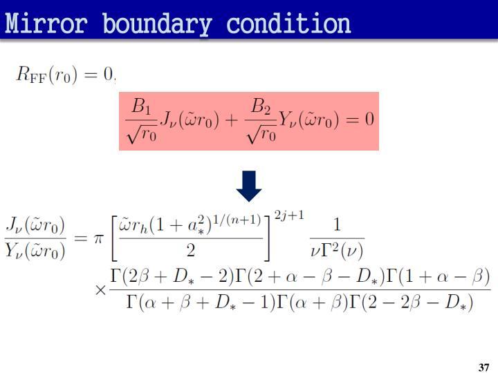 Mirror boundary condition