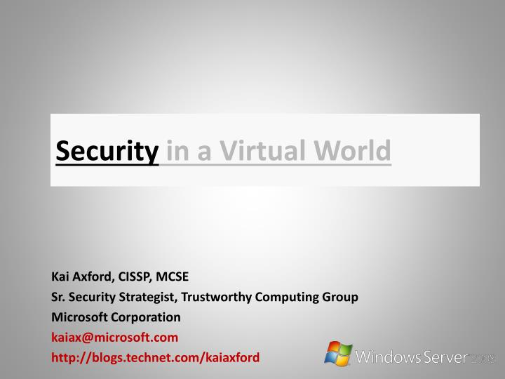 Security in a virtual world