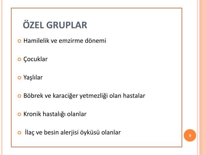 ÖZEL GRUPLAR