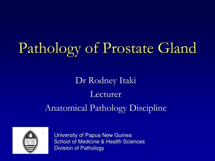 pathology of prostate gland n.