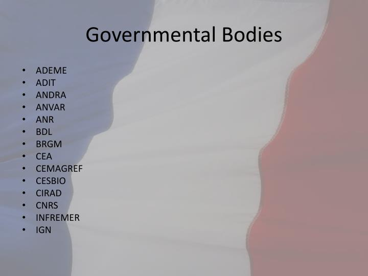 Governmental Bodies