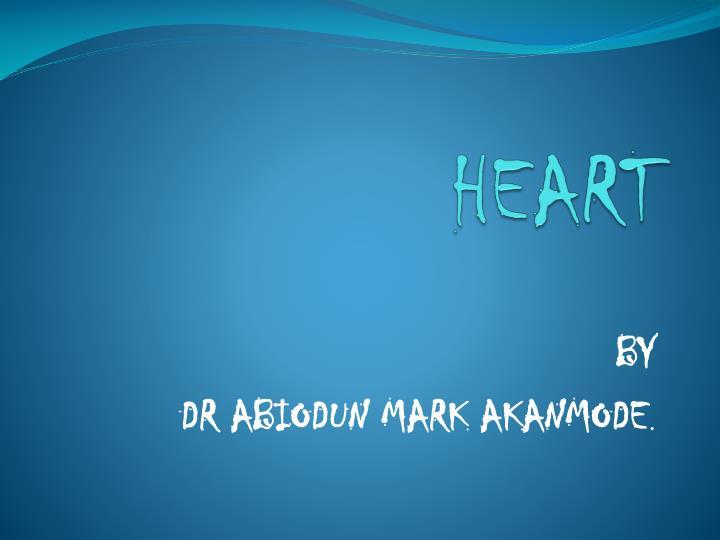 heart n.