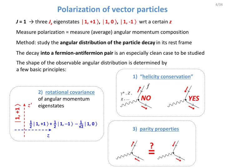 Polarization of vector particles