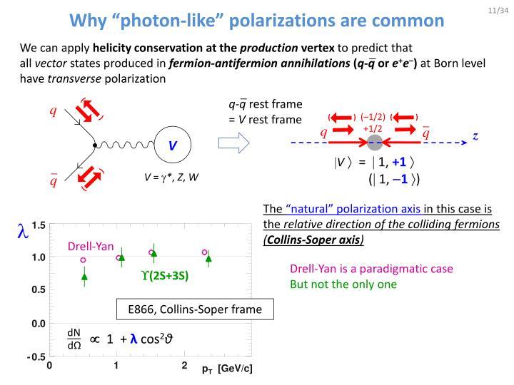 "Why ""photon-like"" polarizations are common"
