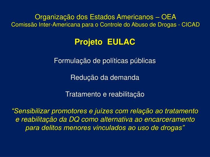 Organização dos Estados Americanos – OEA