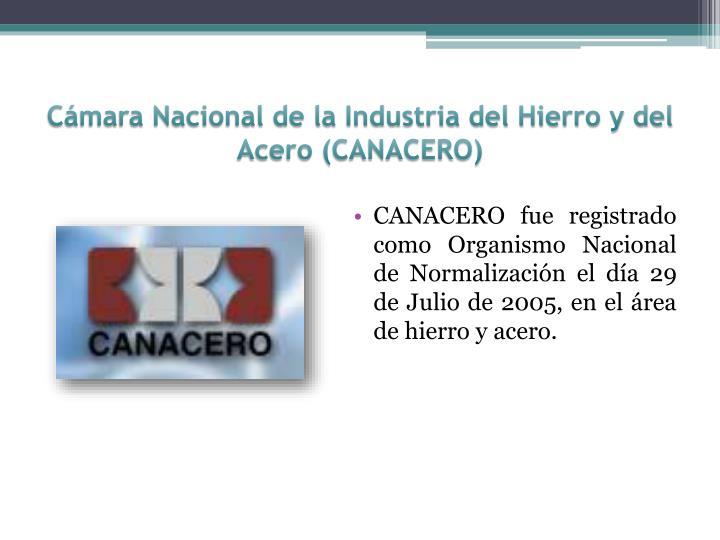 Cámara Nacional de la Industria del Hierro y del Acero (CANACERO)