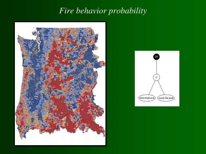 Fire behavior probability