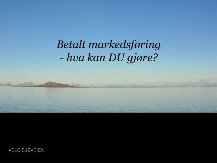 Betalt markedsføring