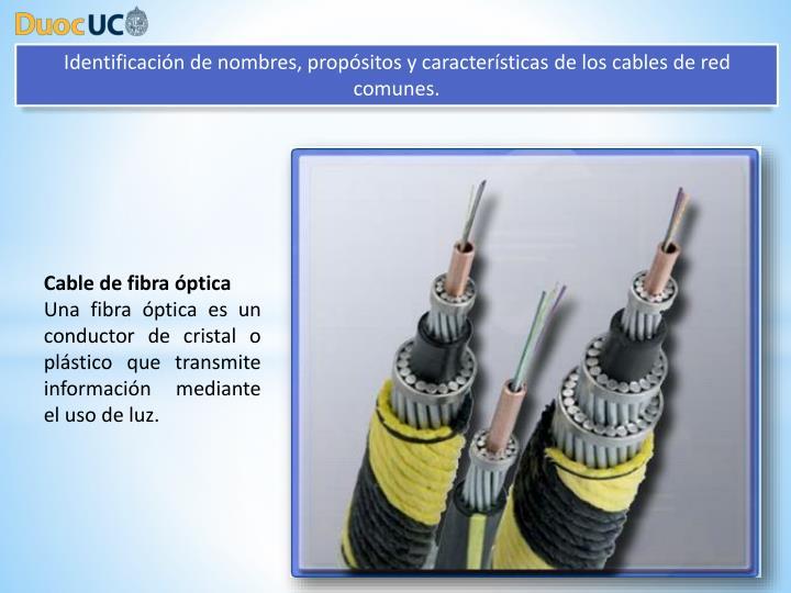 Identificación de nombres, propósitos y características de los cables de red comunes